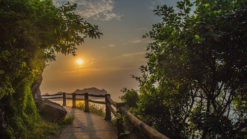Gratis lagerfoto af gylden time, kat ba, smuk solnedgang, vietnam