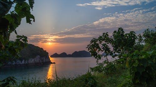 Gratis lagerfoto af gylden time, kat ba, smuk solnedgang