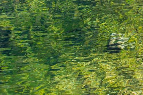 물의 무료 스톡 사진