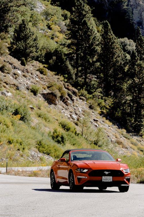 Ilmainen kuvapankkikuva tunnisteilla ajaa, ajoneuvo, asfaltti, auto
