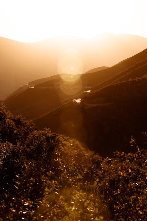 Δωρεάν στοκ φωτογραφιών με ανάπτυξη, βουνά, γραφικός, δέντρα