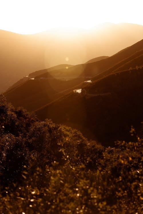 Δωρεάν στοκ φωτογραφιών με βουνά, γραφικός, δάσος, δέντρα