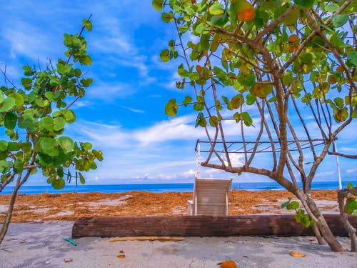 Free stock photo of art photo, beach, beach chair, beach front