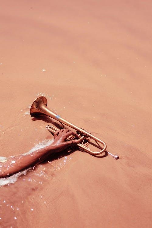 Ảnh lưu trữ miễn phí về biển xanh, bờ biển, kèn, nhạc cụ