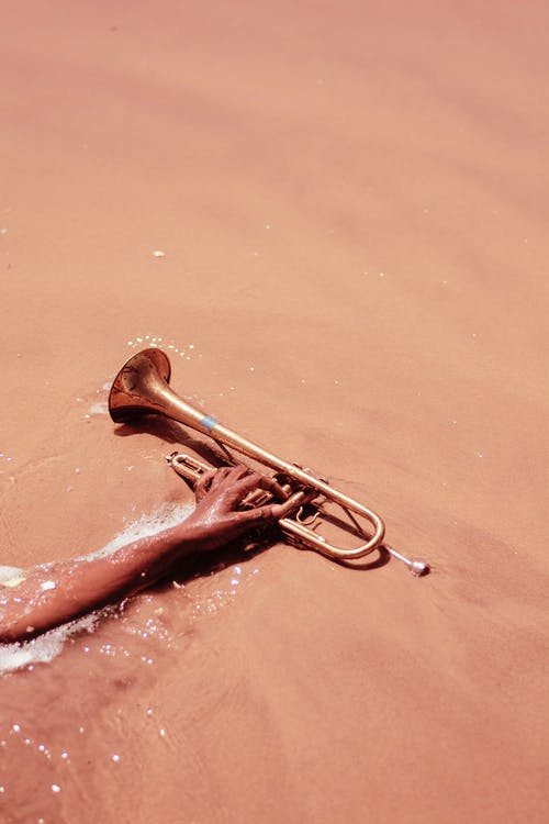 Person Holding Trumpet on Seashore