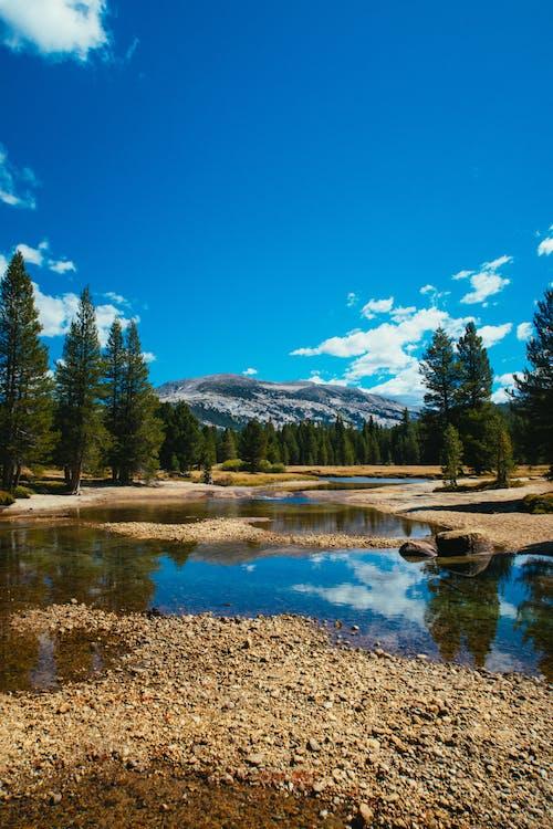 Ilmainen kuvapankkikuva tunnisteilla heijastus, joki, kesä, kivet