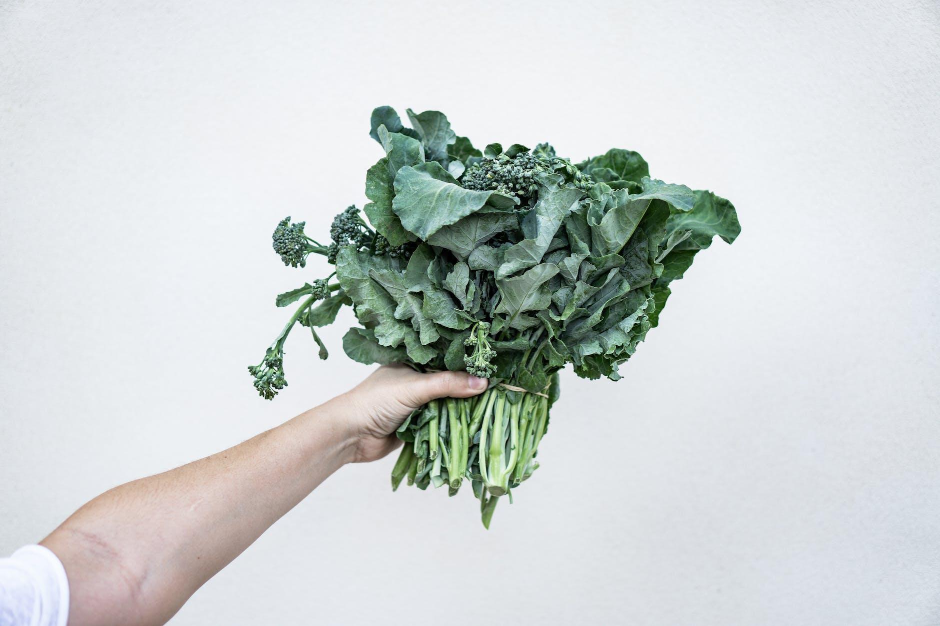 sayur kale membuat mata tetap sehat