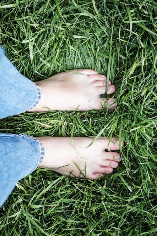 Imagine de stoc gratuită din cu picioarele goale, gazon, iarbă, picioare