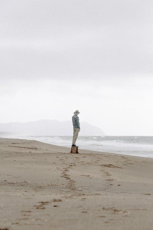 берег, берег моря, Берегова лінія