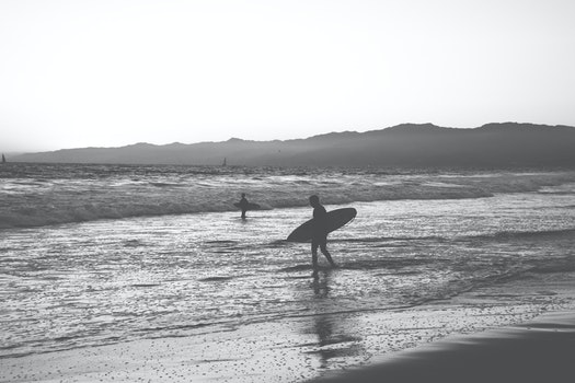 Free stock photo of black-and-white, surfer, surfing