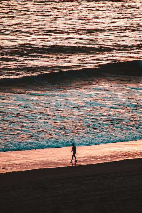 Ingyenes stockfotó egyedül, gyalogló, homok, óceán témában