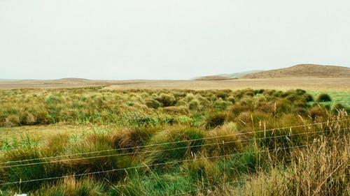 Foto profissional grátis de campina, campo de grama, colinas, desocupado