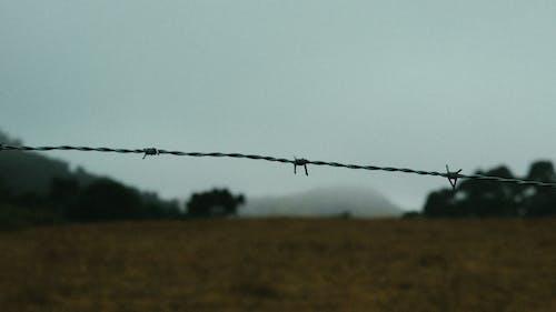 Základová fotografie zdarma na téma denní světlo, drát, hřiště, krajina