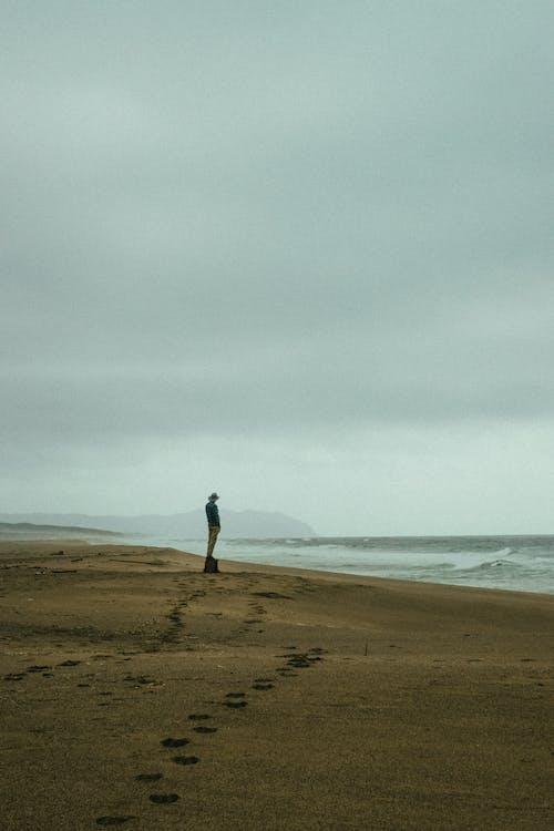 Foto profissional grátis de à beira-mar, adulto, areia, beira-mar
