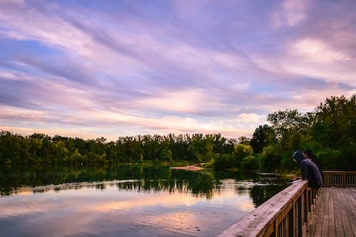 açık hava, ağaçlar, ahşap, balkon içeren Ücretsiz stok fotoğraf