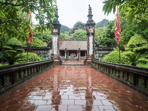Kostenloses Stock Foto zu berg, pagode, tempel, wald