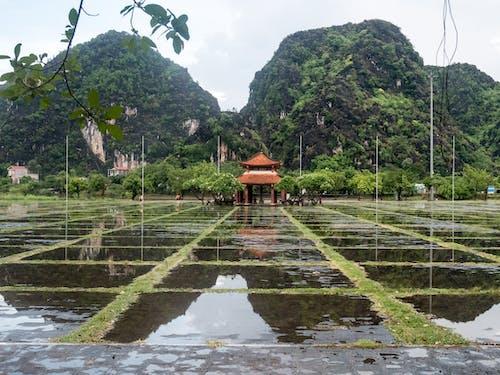Fotos de stock gratuitas de agua, efectos solares, estatuillas, montaña