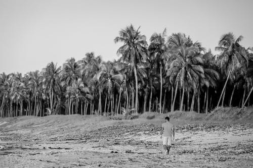 Grayscale Photo of Man Walking Alone on Beach