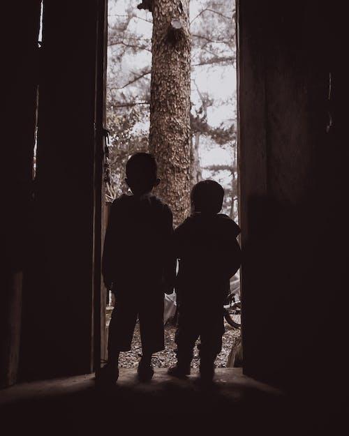 คลังภาพถ่ายฟรี ของ น้องชาย