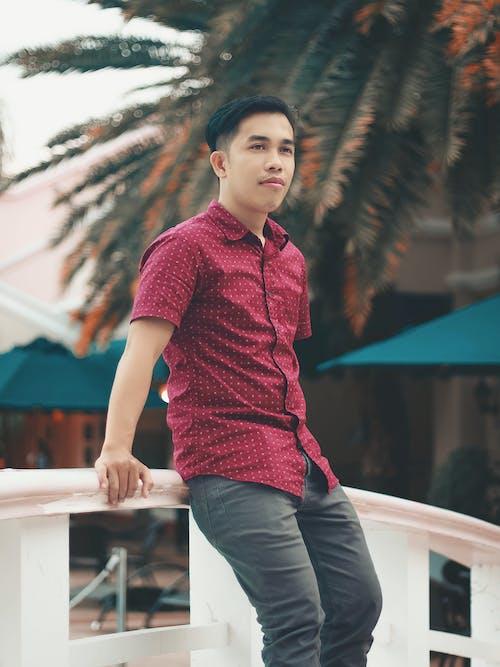 서있는 사람, 아시아 남성, 폴로 셔츠의 무료 스톡 사진