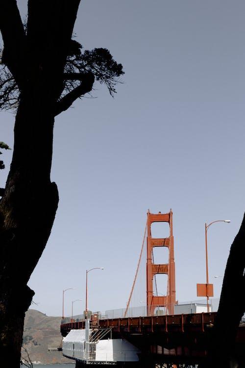 Gratis arkivbilde med arkitektur, blå himmel, bro, dagslys