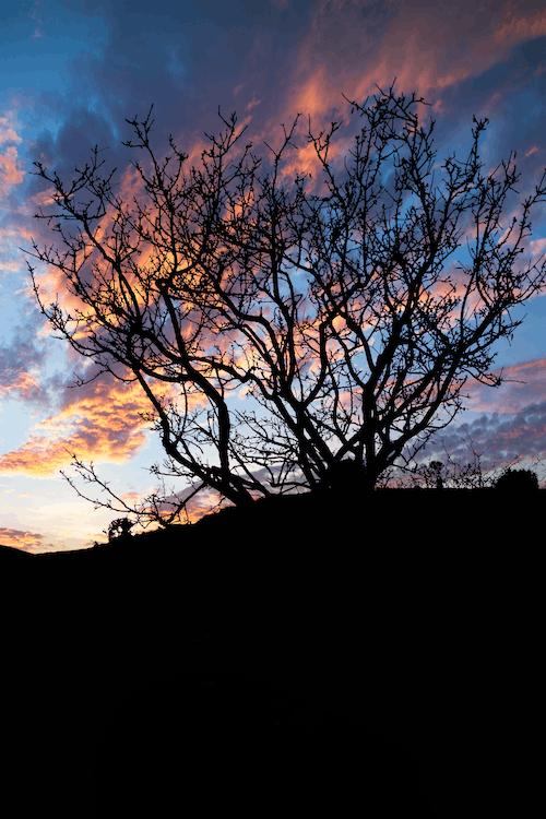 Foto profissional grátis de beleza, céu, céu azul, pôr do sol