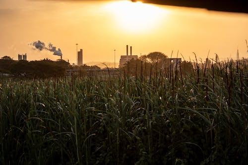 Gratis arkivbilde med fabrikk, forurensning, gammel fabrikk, global oppvarming