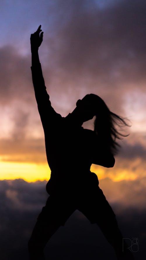 Foto d'estoc gratuïta de alba, capvespre, foto vertical, ombra