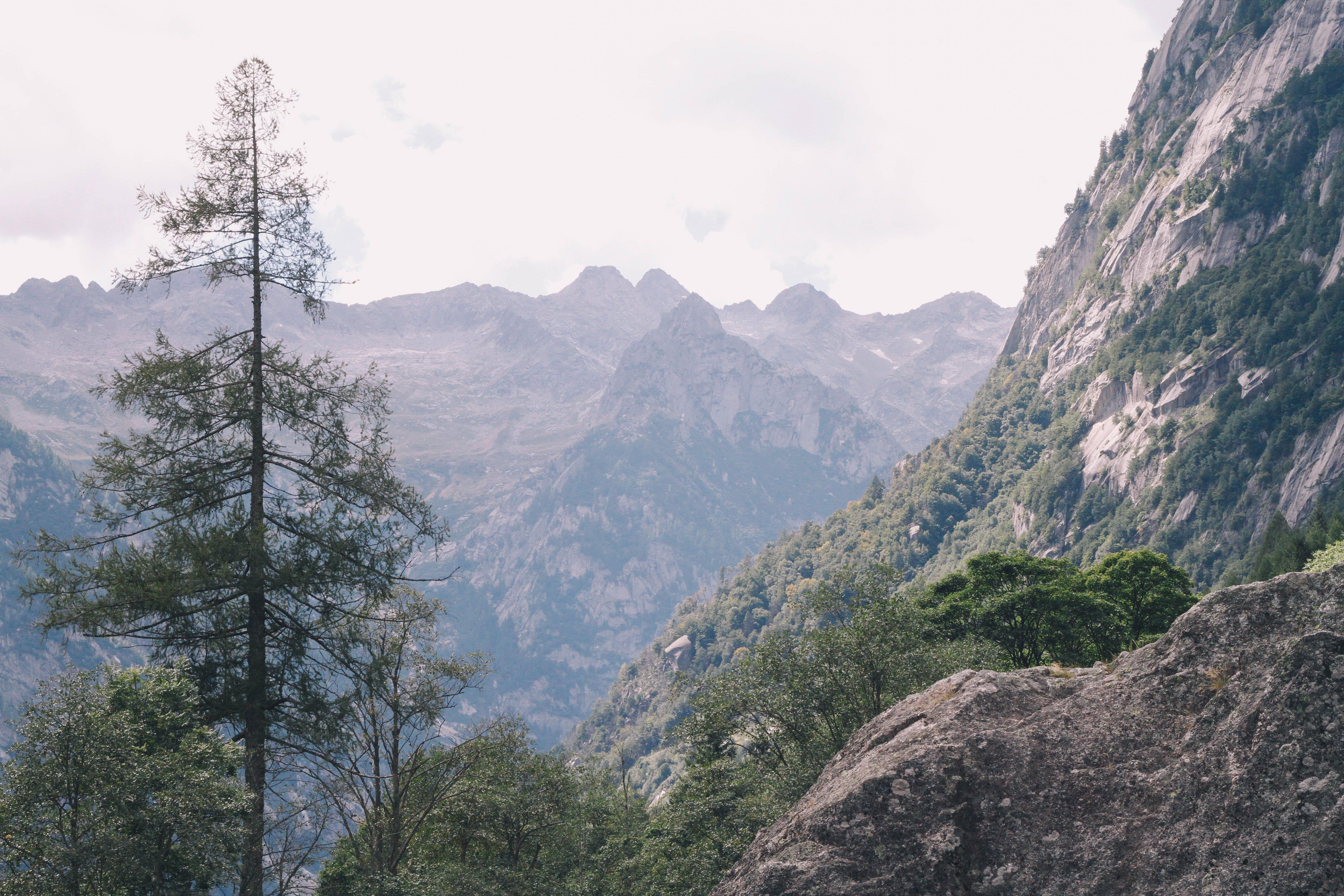 adventure, environment, high