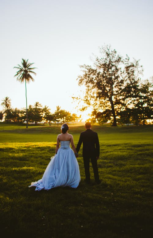 Back View Photo of Bride and Groom Holding Hands While Standing on Grass Field