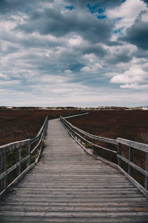 Photos gratuites de aube, bois, chemin, ciel nuageux