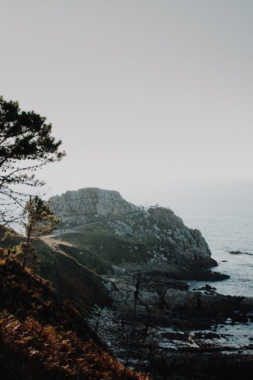 Grey Rock Formation