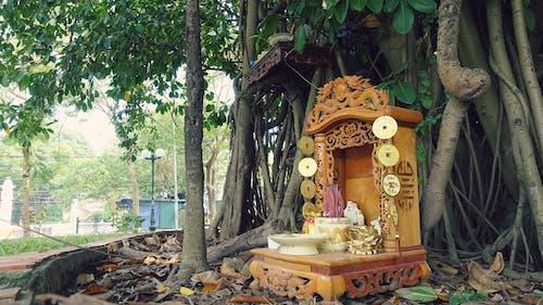 Základová fotografie zdarma na téma althar, bohatství, bohy, buddistu