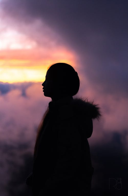 Gratis lagerfoto af pige i skygger, silhouet, skygge, solnedgang