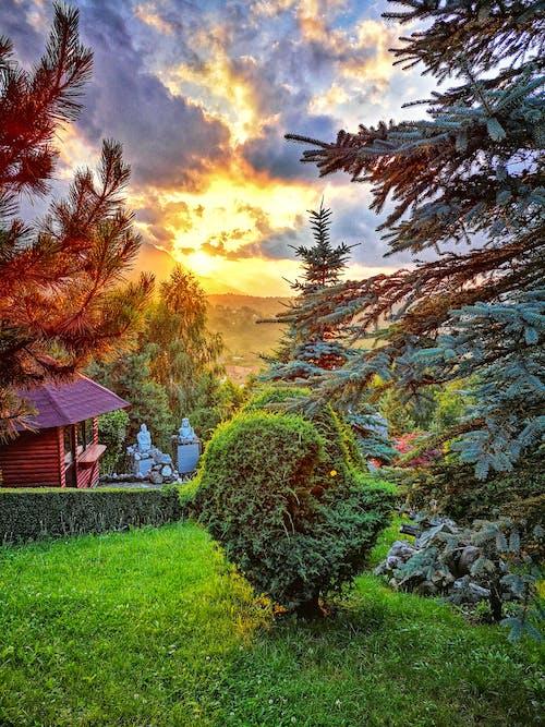 Základová fotografie zdarma na téma krásná krajina