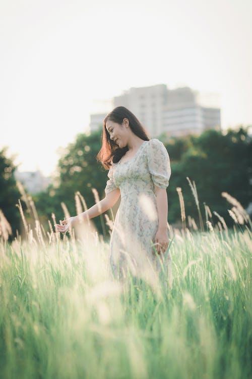 人, 女人, 田, 草 的 免费素材照片