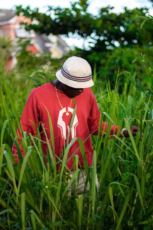 Gratis lagerfoto af afrikansk mand, afroamerikansk mand, alene, bucket hat