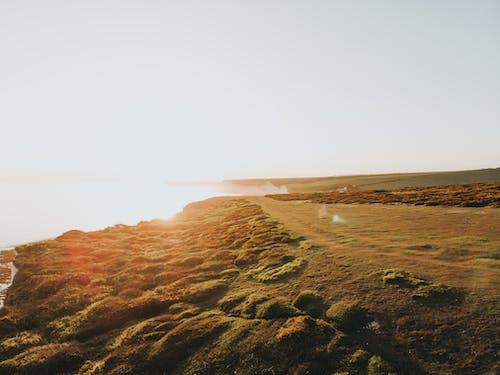 Kostnadsfri bild av fält, grässlätt, gryning, horisont
