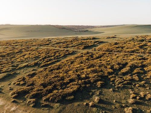 Imagine de stoc gratuită din de deasupra, deal, fotografie din aer, peisaj