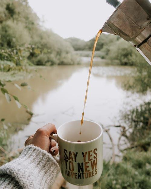 머그, 술을 마시다, 음료, 카페인의 무료 스톡 사진