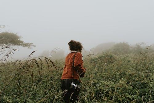 Foto d'estoc gratuïta de a l'aire lliure, amb boira, aventura, boira
