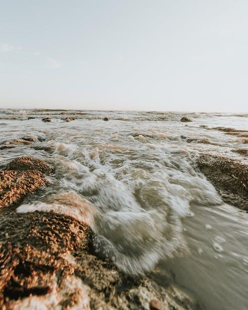 Foto d'estoc gratuïta de acomiadar-se, aigua, capvespre, estiu
