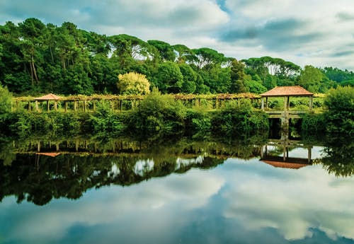 Free stock photo of calm, calm waters, cloud forest, hdr