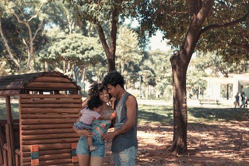 Foto d'estoc gratuïta de a l'aire lliure, afecte, amor, arbres