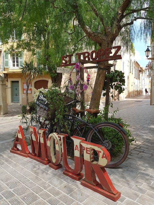 마을, 빨간, 사랑, 플로리스트의 무료 스톡 사진