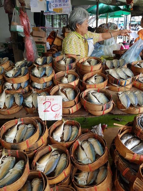 물고기, 수산시장의 무료 스톡 사진