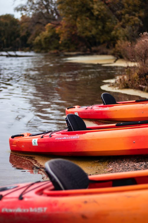Free stock photo of autumn, fall, kayak, october