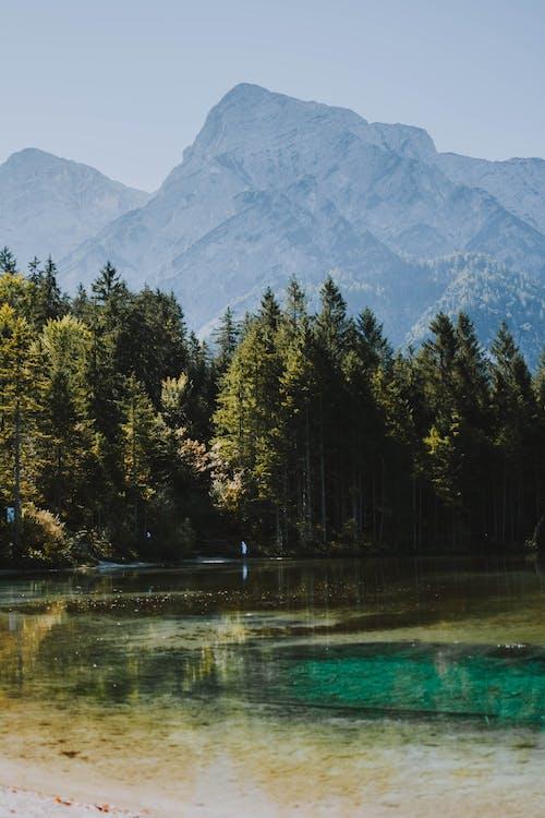 Photo of Lake Near Trees Across Mountain