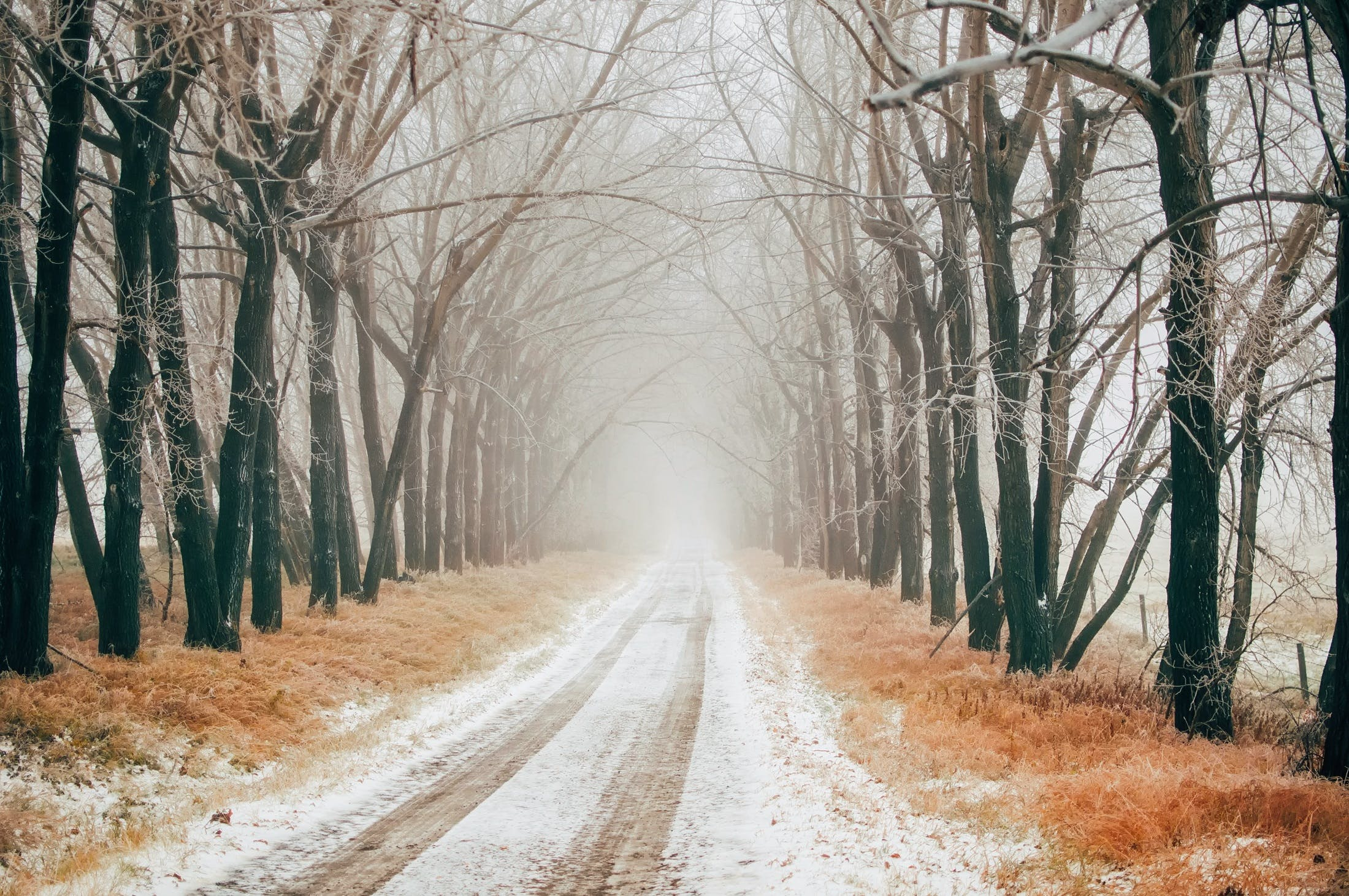 Free stock photo of snow, road, landscape, nature