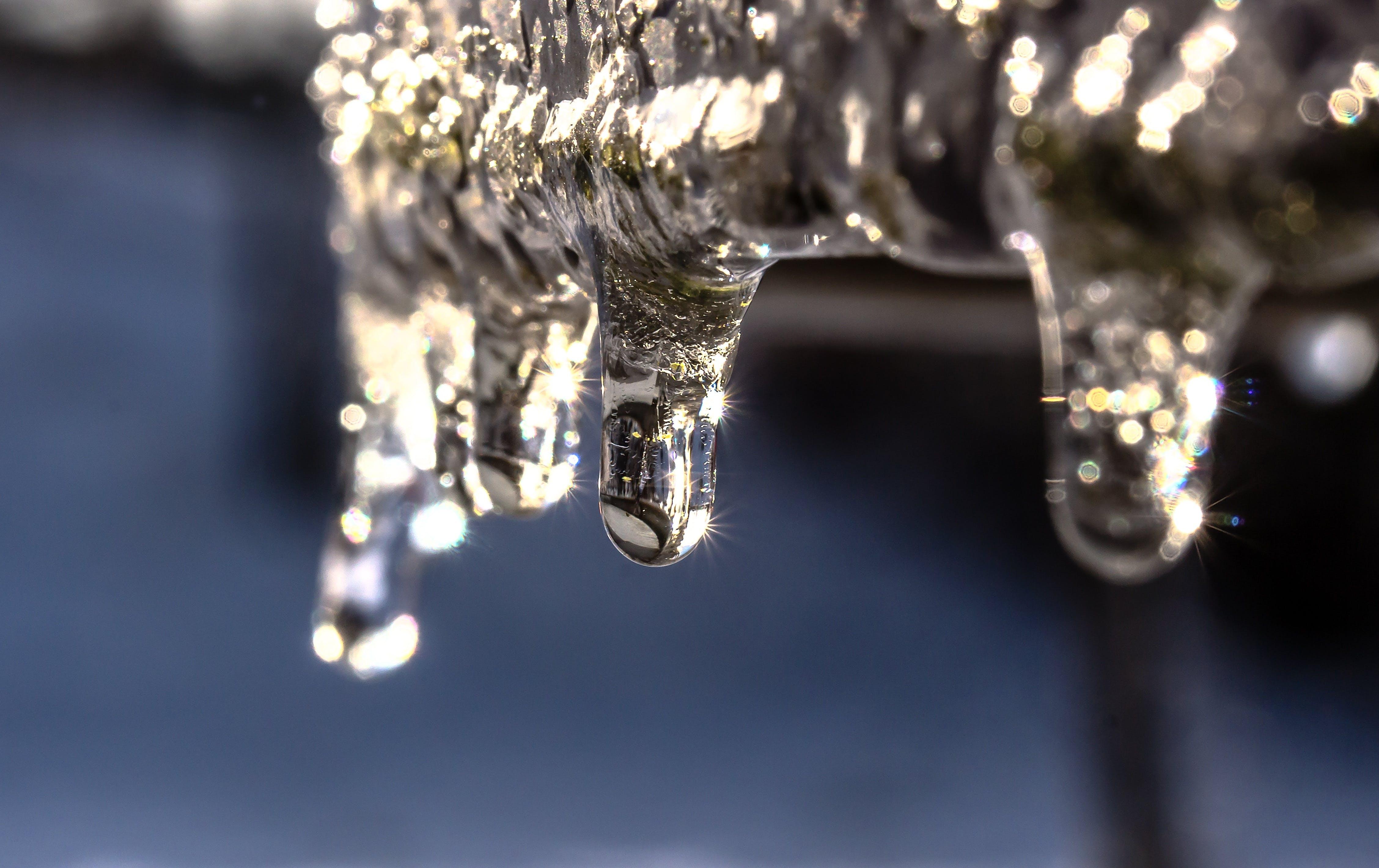 Kostenloses Stock Foto zu einfrieren, eis, eisig, frost